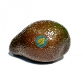 Aguacate Hass 500G